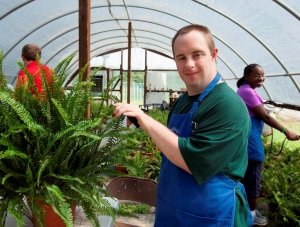young man wearing a work apron in a garden nursery